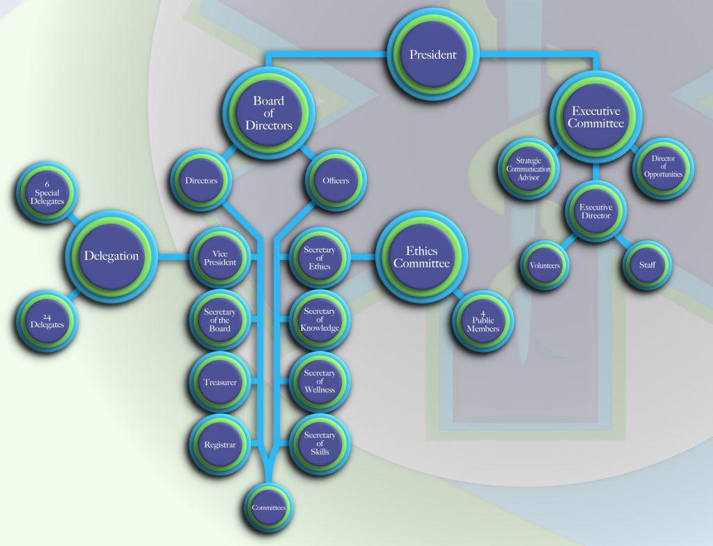 Organizational flow chart of the Alberta Paramedic Association.